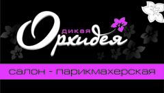 Дикая орхидея в ТЦ «Алми»