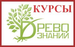 Древо знаний в Бобруйске