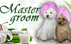 Мастер Грум / Master Groom