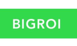 Академия BIGROI